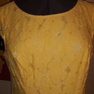 Adriana Papell embroidered lace dress